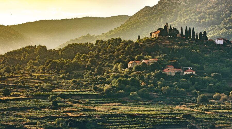 Croatia_Hvar_Maslina_Resort_nature_fivestardestination_five_star_destination_4-min